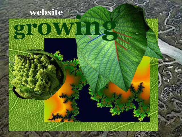 Growing website copia