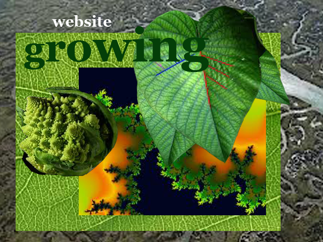 Growing website copia