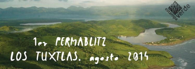 Permablitz